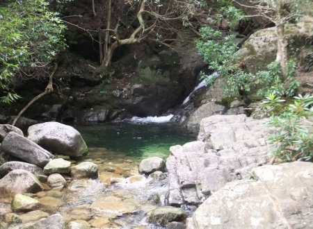 river pool